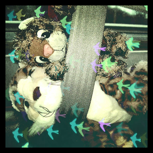 Spot and Junior say: always wear a seat belt!